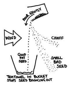 winnowing-diagram.jpg